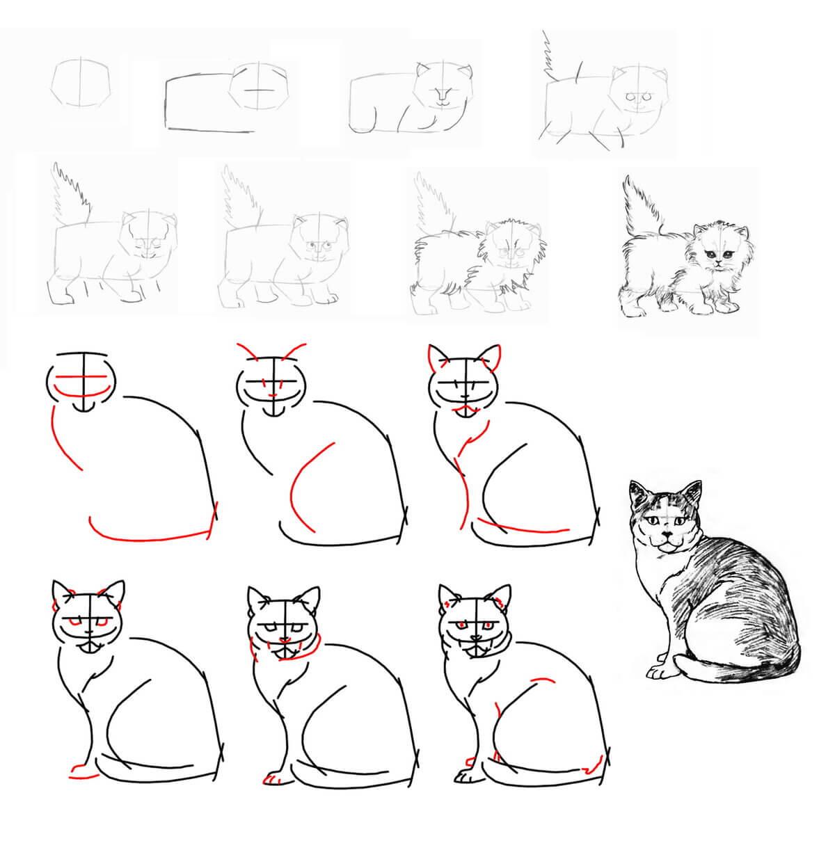 рисунки кошек поэтапно карандашом